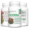 Hoodia Gordonii Cactus Appetite Suppressant